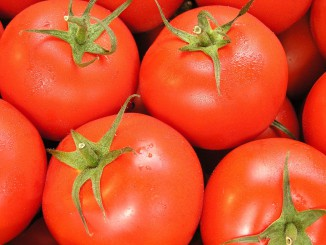 Invest in Ukraine: largest tomato processing plant in Europe to be built in Ukraine