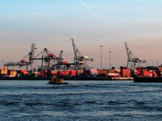 European and Latin American companies interested in Odesa Port Plant