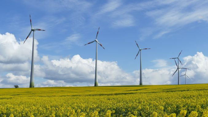 Investing in Ukraine: USA to finance construction of a large wind farm in Ukraine